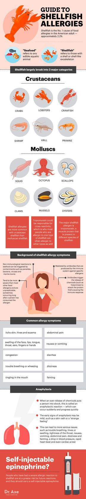 Guide to shellfish allergy http://www.draxe.com #health #holistic #natural