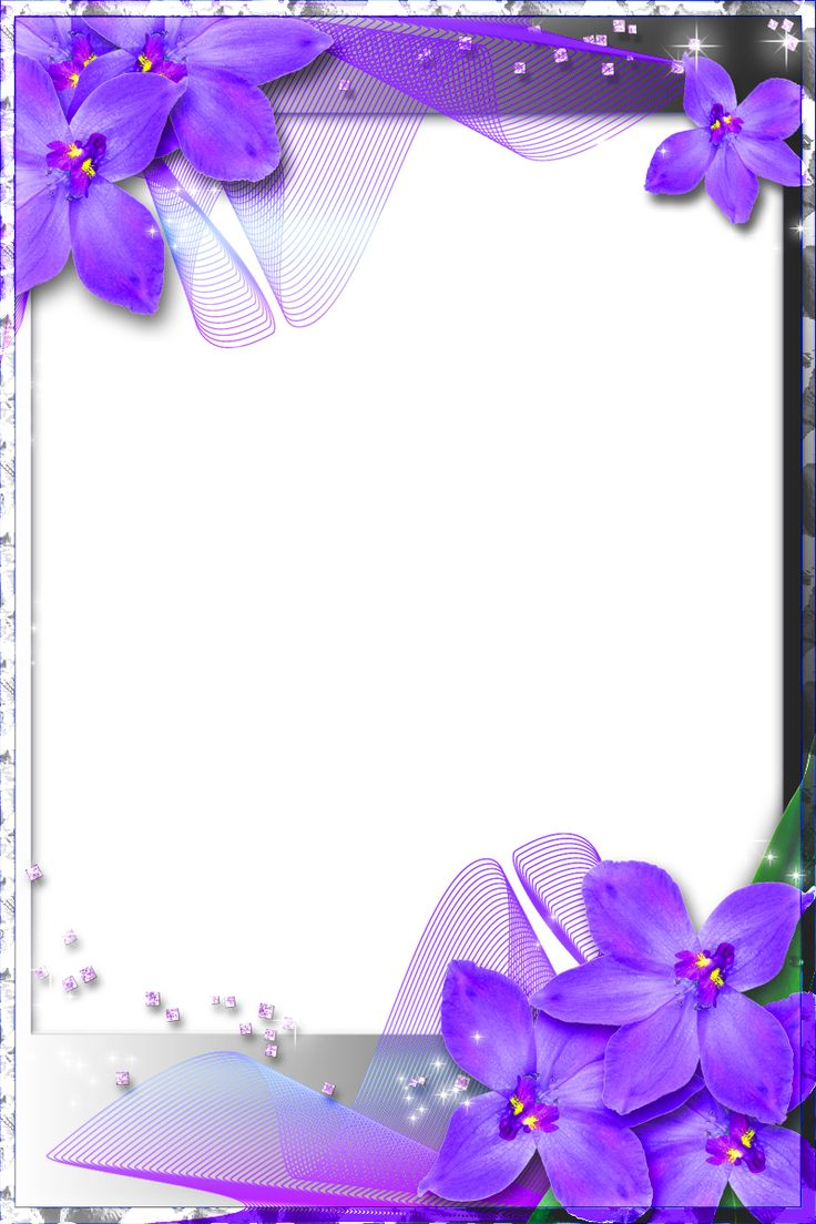 Beautiful Transparent Frame with Purple Orchids Floral