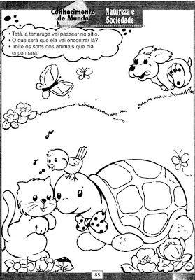 Atividades natureza e sociedade - Atividades Pedagogicas
