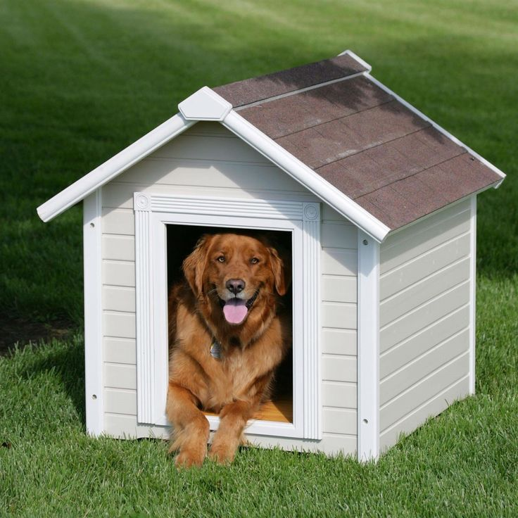 Solid Wood Luxurious Dog House with Classic Asphalt Shingle Roof