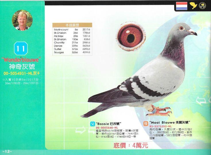 verkoop Taiwan | Website Kees Bosua