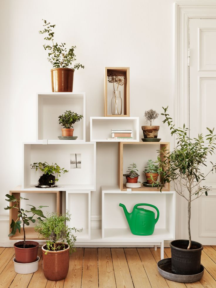 Muuto - Stacked shelf system, designed by JDS Architects, in a setting with plants.