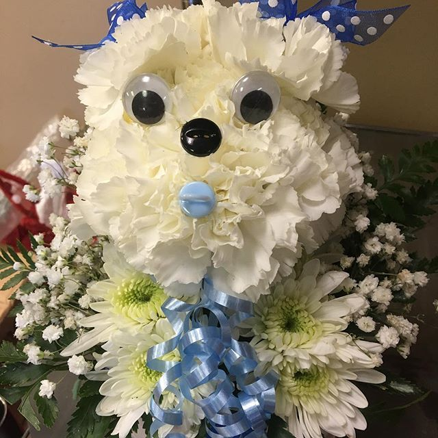 16 best new baby gift flower ideas images on pinterest flower adorable little puppy made from carnations for a new baby boy arrangement negle Gallery