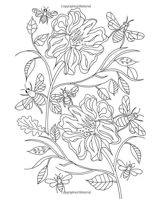 Flower Hunter: Colouring Book:  De-ann Black
