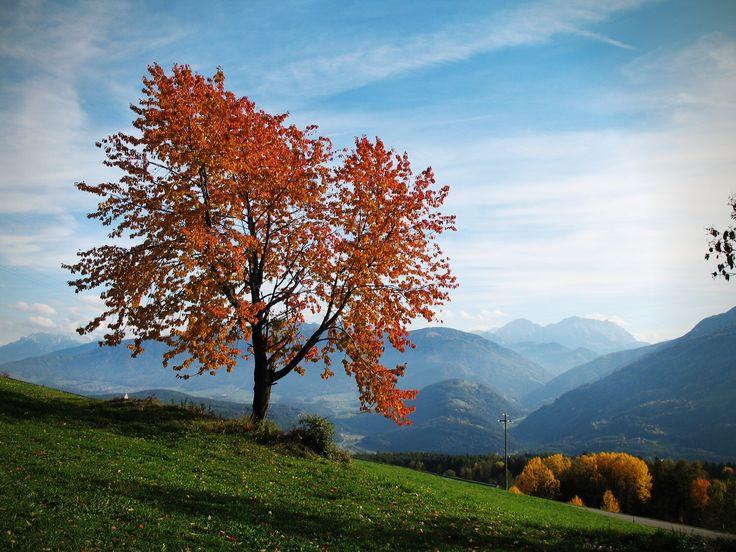 Herbstzeit im Pustertal! Autunno in Val Pusteria! Autumn in Val Pusteria/Pustertal!