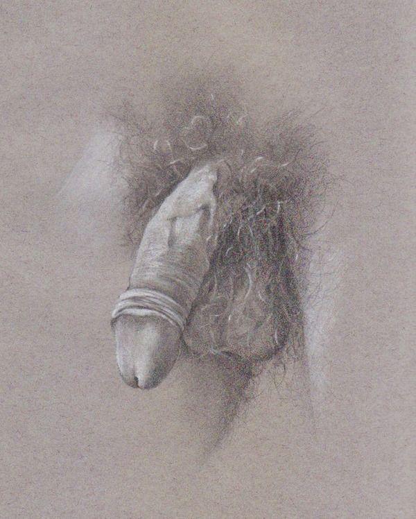 Penis Portraits 119