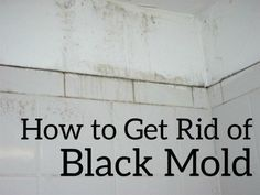 Save money and do it yourself! This article shows you a step-by-step guide to how to get rid of black mold in a bathroom or carpet by using natural, non-toxic products.