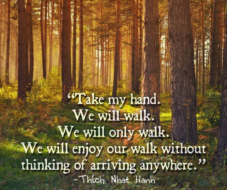 Thich Nhat Hanh Take my hand. We will walk. We will only walk. We will enjoy our walk without thinking of arriving anywhere