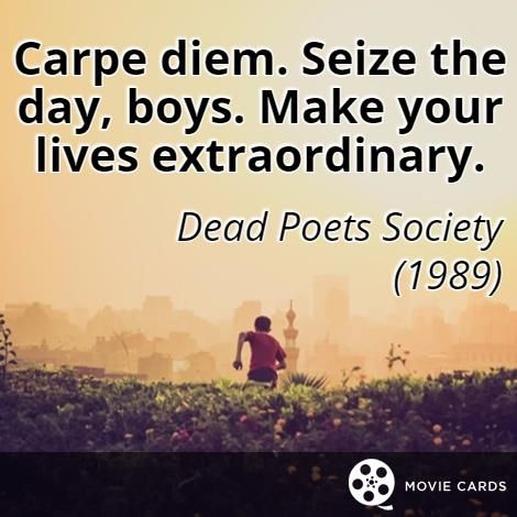 Seize The Day Quotes 62 Best Seize The Day Quotes Images On Pinterest  Seize The Days