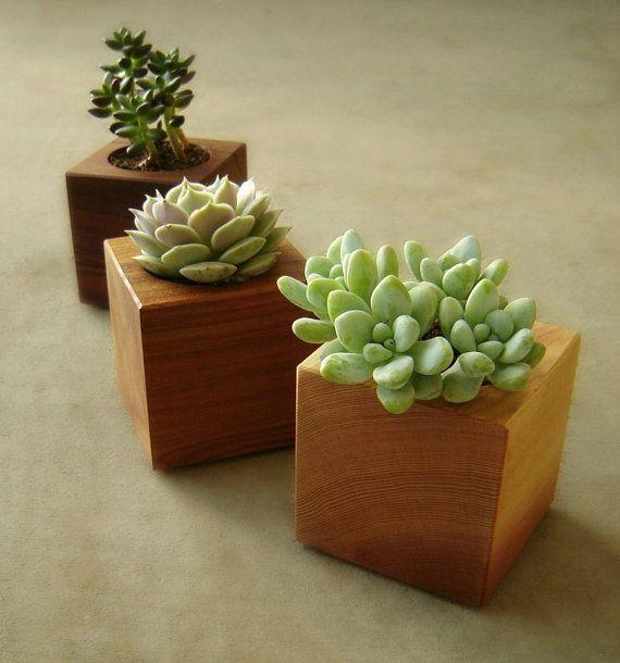 Design cubista succulente fioriere, fioriere coperta moderne, in legno riciclato…