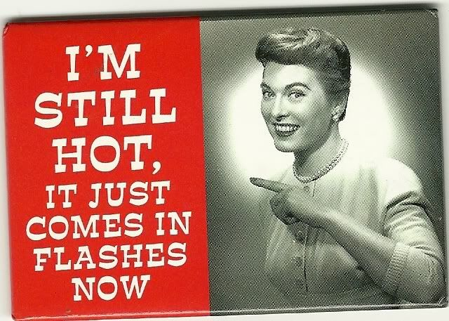 Still HOT??: Hormone Hotflash, Menopausemonday Hotflash, Hotflash Womenshealth, Hotflash Bitch