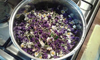 Tvoření domova: Sirup z fialek a sedmikrásek