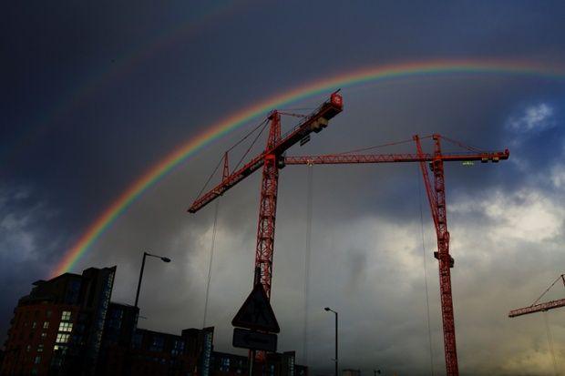 Happy Crane after rain