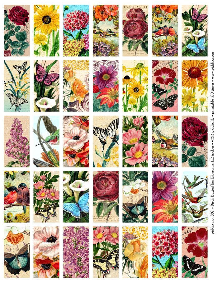 Butterflies, Birds and Blossoms Printable Digital Collage Sheet in 1 x – Annie Howes