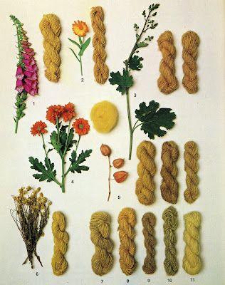 Natural dyes via PALE                                                                                                                                                                                 Más