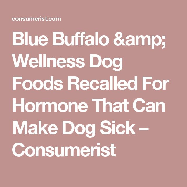 Can Apples Make Dogs Sick