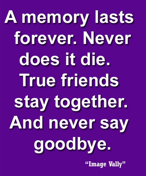 Friendship Quotes Love And Life: 17 Best Old Friendship Quotes On Pinterest