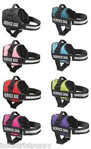 Service Dog Vest Harness with 2 Reflective Matching Velcro Patches USA Seller | eBay