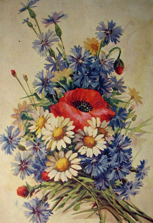 Дочери, советские открытки с ромашками