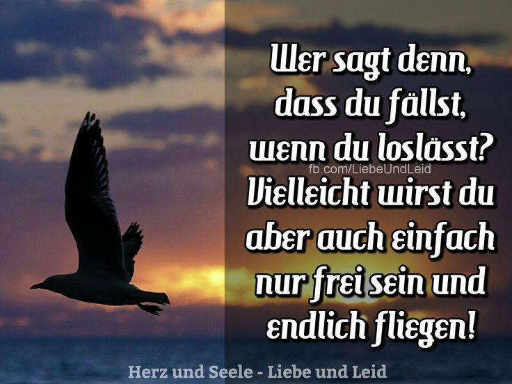 ...wirst du frei sein und endlich fliegen    Das Geheimnis des loslassens ~ dir können die größten Flügel wachsen .