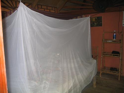 MOSQUITERO PARA EVITAR LOS MOSQUITOS. Mi Primera Condicion Cuando Voy A R.  D. · Dominican RecipesDominican RepublicMosquito NetSantiagoSantosSanto ...