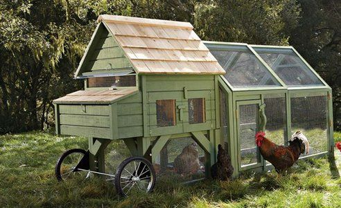 Oh this is such a sweet coop! I want it!!: Chicken Coops Running, Chicken Tractors, Williams Sonoma, Chickencoop, Wheels, Williamssonoma, Backyard Chicken Coops, Chicken Houses, Mobile