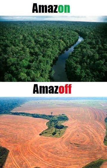 imagenes del deterioro ambiental antes y despues