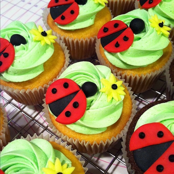 Cupcake Decorating Ideas Insects : 29 best images about San Antonio on Pinterest Birthdays ...