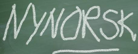 Nynorsk oversetter, ordliste og regler