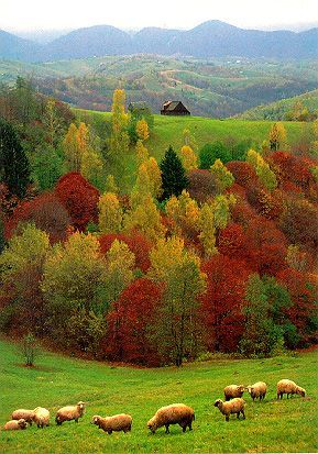 Autumn mother nature moments