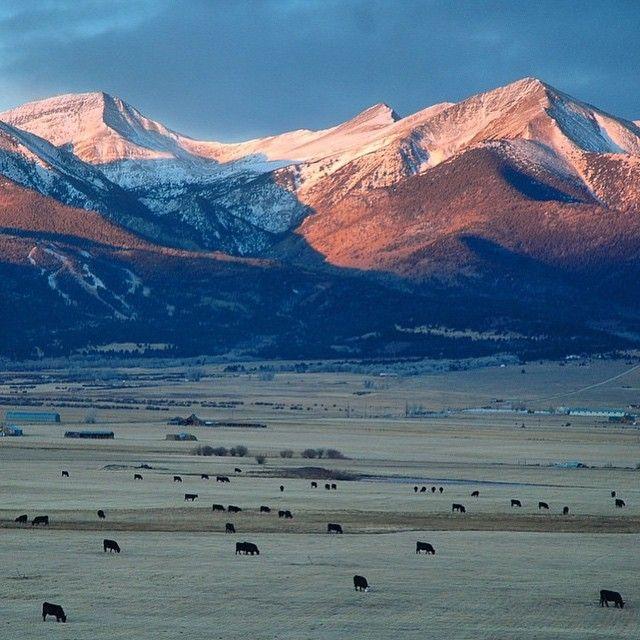 2593 Best Colorado Ii Images On Pinterest