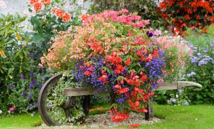 A wheelbarrow full of colorful flowers in the countryside outside of London, England,   the colors of which transcend within the home's English country decor.