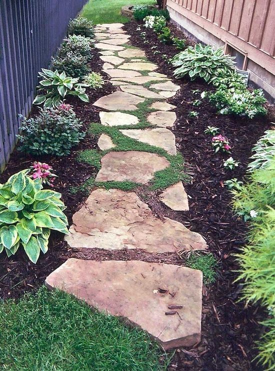 walkway love the stones with steppable plants between and plants lining pathway instead of grass backyard landscapingbackyard ideasoutdoor