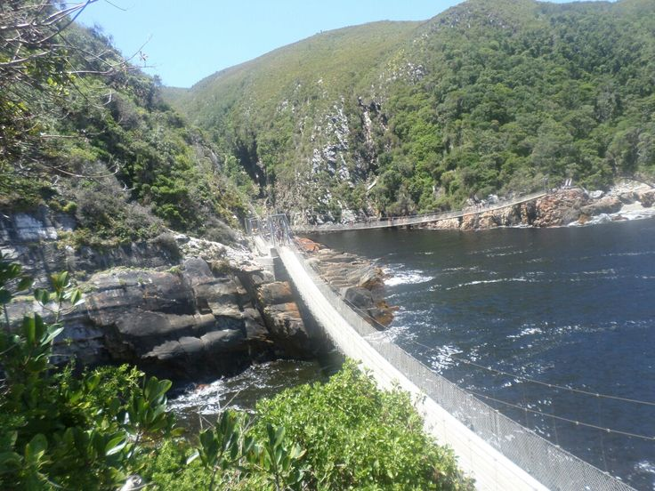 Tsitsicamma Nature's Reserve, Suspension Bridge
