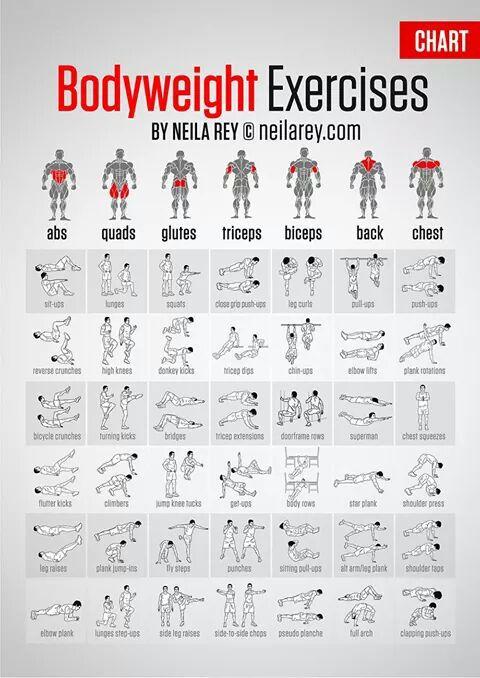 Body Weight Exercises                                                                                                                                                                                 Mais
