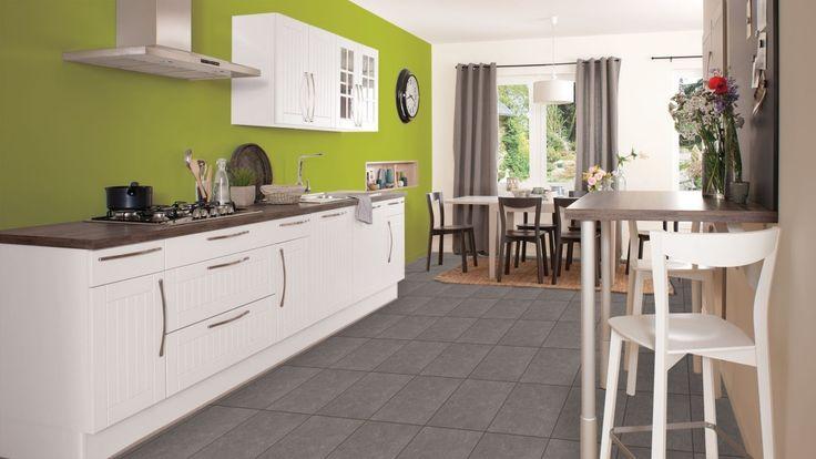 Jolie cuisine mur vert anis photos cuisine et d coration for Peinture cuisine vert anis