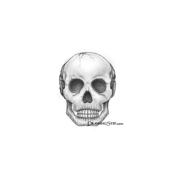 Only Best 25 Ideas About Skull Drawings On Pinterest: Best 25+ Simple Skull Drawing Ideas Only On Pinterest