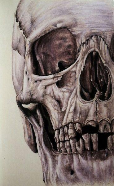 """Skull"" Art Print by Jerrychacon on Society6."