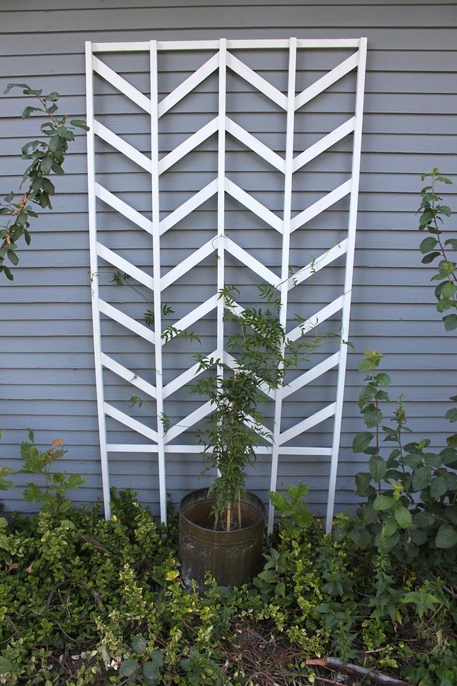 DIY Chevron Trellis. When I finally get around to doing something about my yard this will be on my project list!  At Smile and Wave.