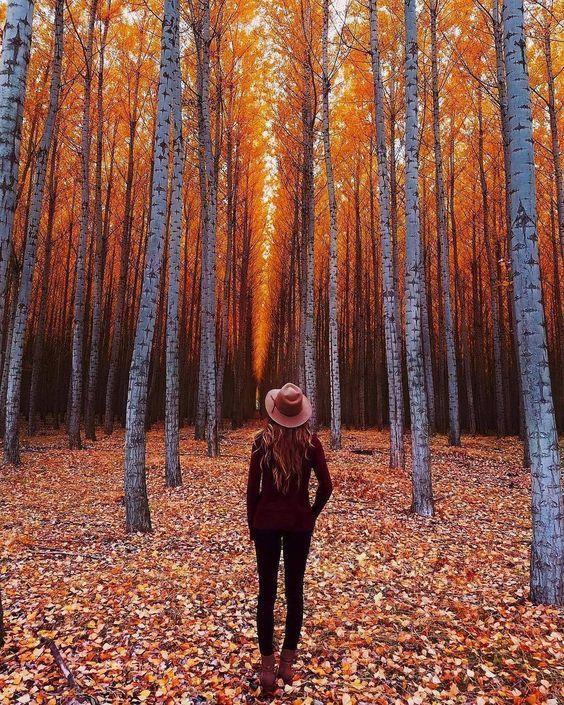15 Fotoshooting-Ideen für den Herbst für ernsthafte Inspos