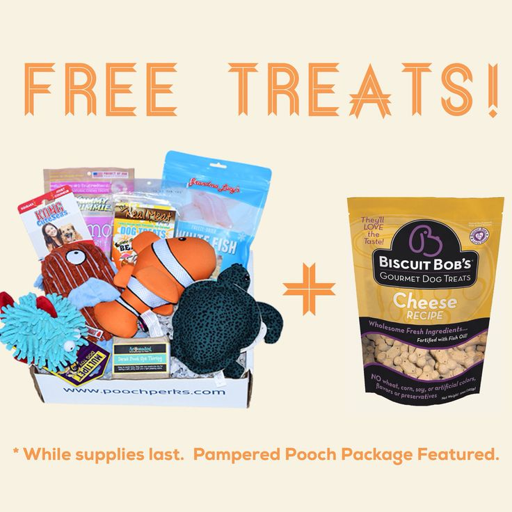 25 best sales discounts coupons oh my images on pinterest get a free bag of biscuitbobs treats with every purchase while supplies last use code freetreats at checkout fandeluxe Gallery