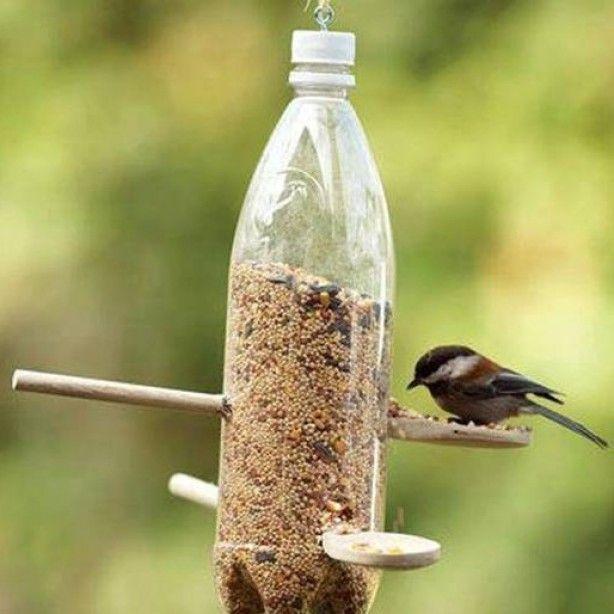 vogels voeren in de tuin