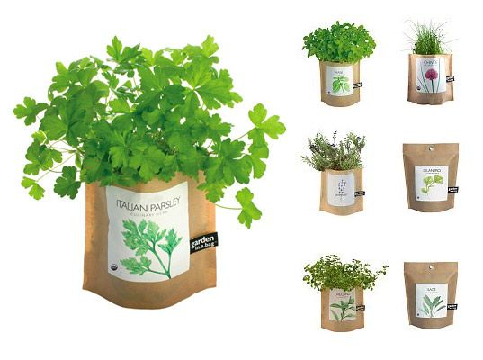 Garden in a bag: perfect for city people who want to exercise their green thumbs.