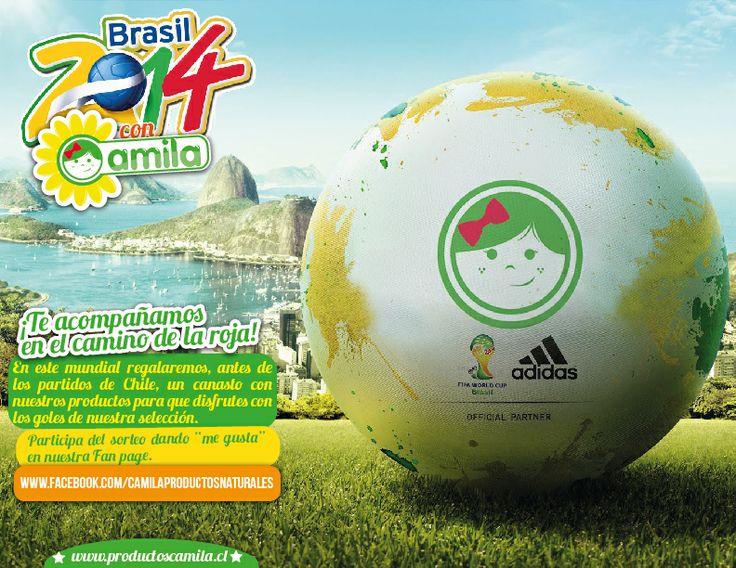 Mundial Brasil 2014 - Promo Canasta Productos Camila