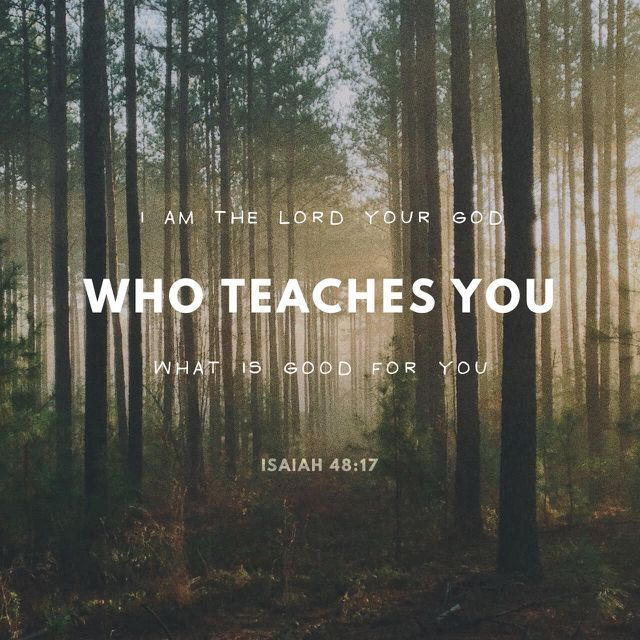 """Thus saith the Lord, thy Redeemer, the Holy One of Israel; I am the Lord thy God which teacheth thee to profit, which leadeth thee by the way that thou shouldest go."" ‭‭Isaiah‬ ‭48:17‬ ‭KJV‬‬ http://bible.com/1/isa.48.17.kjv"