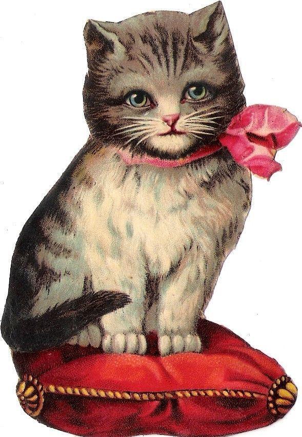 Vintage Cat 109