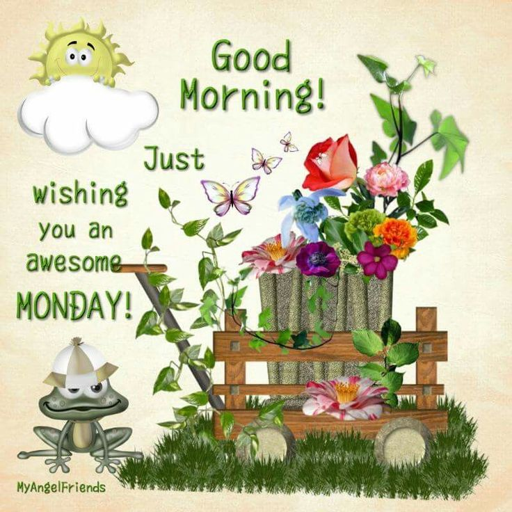 Good Morning Wishing You A Happy Monday