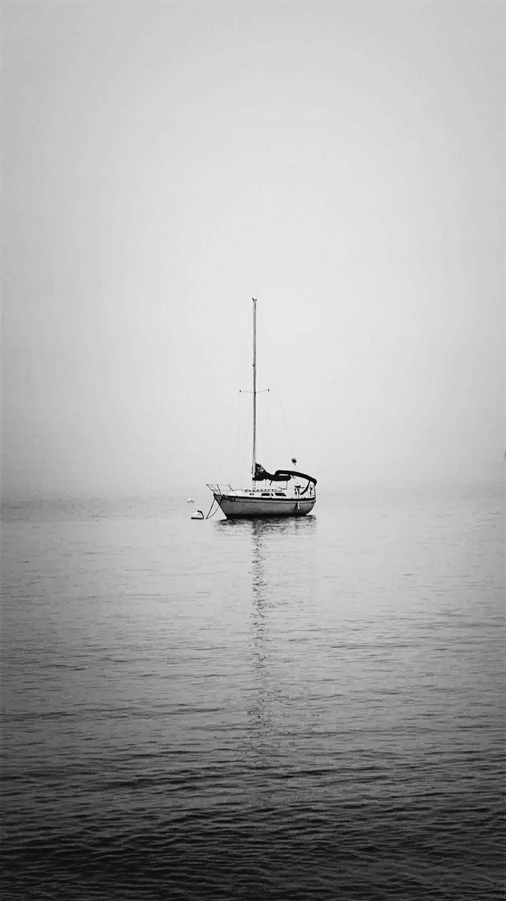 Fog on the Water, copyright J. Nathaniel Dicke / Evermore Photography, Minneapolis #evermorephotograhympls