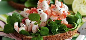 Open sandwiches with prawn, tomato and lime mayonnaise – Recipes – Slimming World