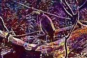 """New artwork for sale! - """" Blue Heron Waterbird Animal Pond  by PixBreak Art """" - http://ift.tt/2uIpNDz"""